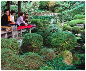 Decoración de jardines pequeños